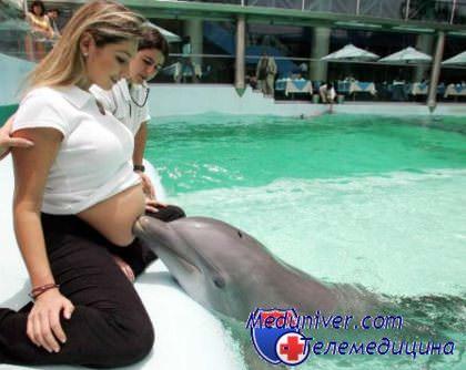 Какие факторы влияют на шевеление плода в утробе матери? Когда и как начинает шевелиться ребенок?