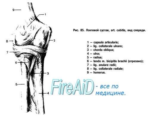 Варусная деформация локтевого сустава встречается после медицина.плечевой сустав.перелом плечевого сустава.показан ли массаж