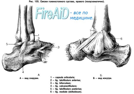 Изображение - Хроническая нестабильность голеностопного сустава 87