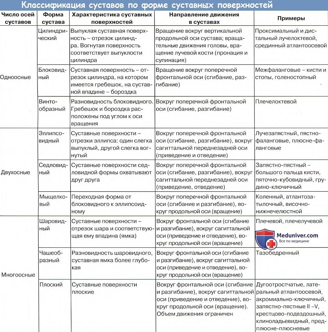 Отличие простых суставов от сложных лечение суставов в италии