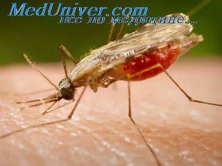лечение тропической малярии