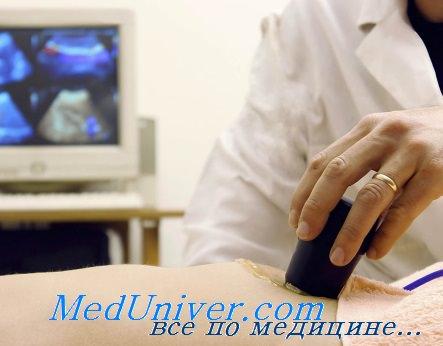 Половой член медицинское видео