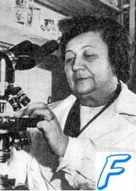 З.В. Ермольева открыла отечественный пенициллин