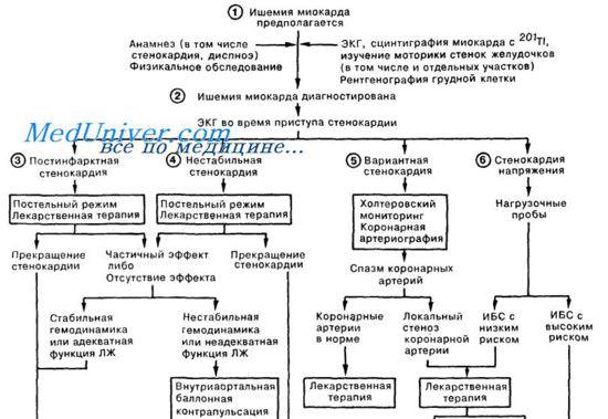 Принципы лечения стенокардии