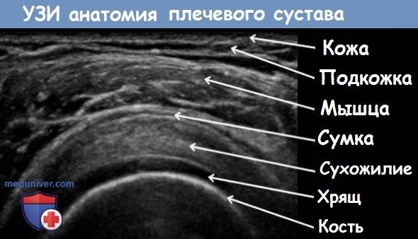 Методики узи суставов болят суставы пальцев во время беременности