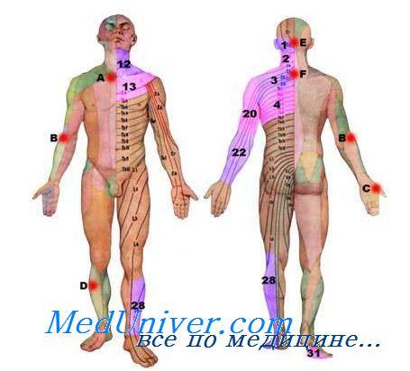 плексит плечевого сустава лечение народными средствами отзывы