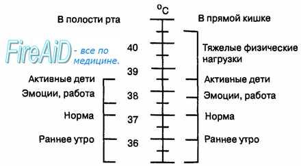 Пойкилотермная оболочка. Температура комфорта. Температура тела человека.