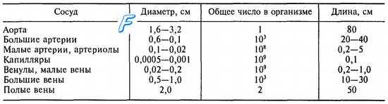 Характеристика движения крови по сосудам. Гидродинамические характеристики сосудистого русла. Линейная скорость кровотока.