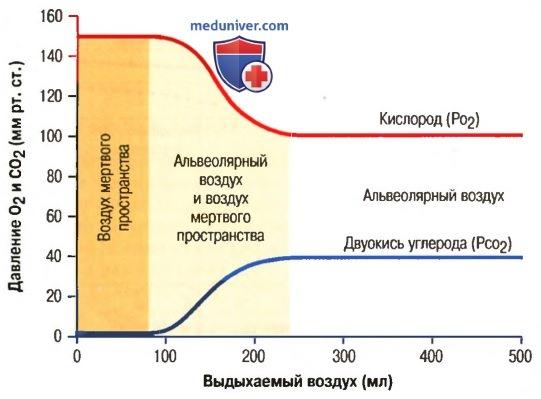 Концентрация и парциальное давление кислорода в альвеолах. Выдыхаемый воздух
