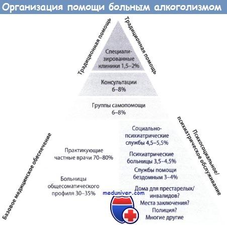 Этапы развития алкоголизма