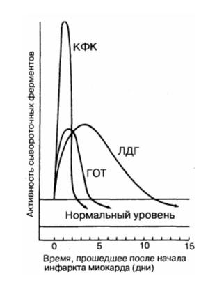 ферменты инфаркта миокарда