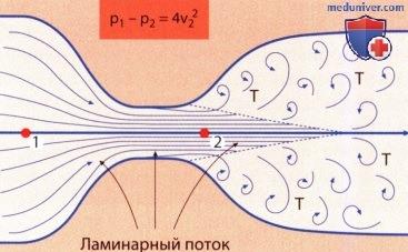 Применение теоремы сохранения энергии: расчет градиентов по скоростям движения крови в эхокардиографии (ЭхоКГ)