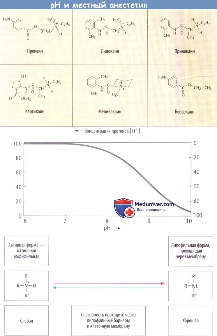 pH и местный анестетик