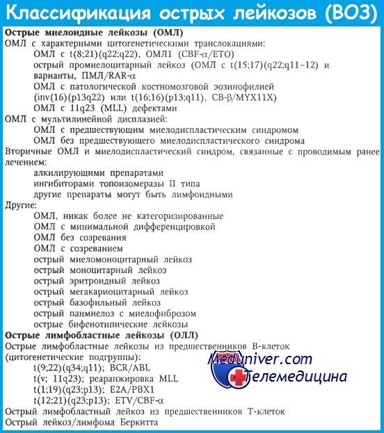 Классификация острых лейкозов по ВОЗ