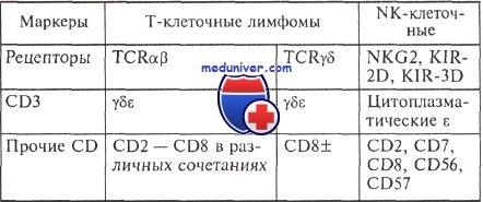 Признаки Т/NK клеточных лимфом