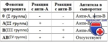 определение группы крови плода