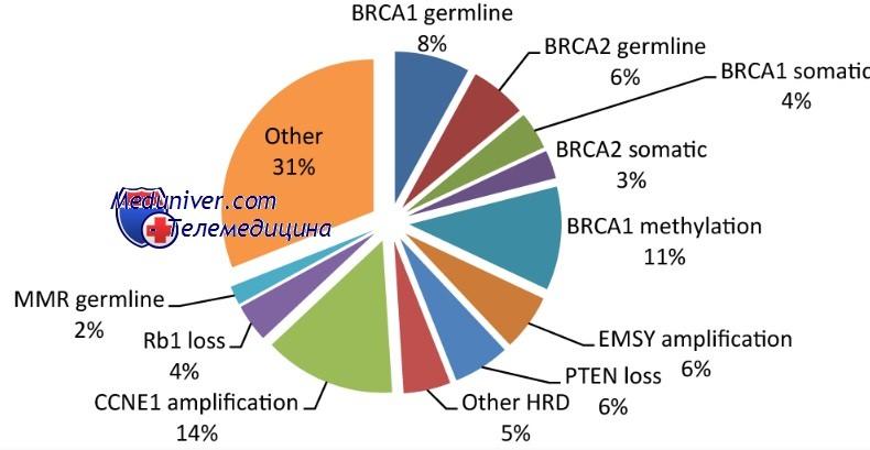 причины рака молочной железы и яичников