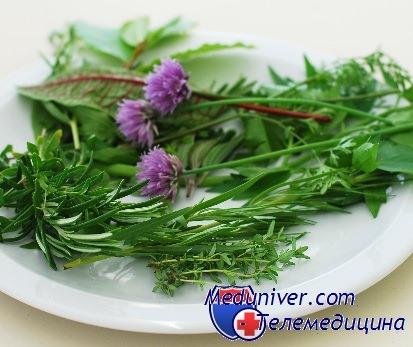 лечебные свойства трав
