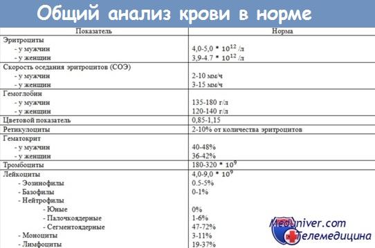 Пойкилоцитоз в общем анализе крови норма медицинская одежда дешево санкт-петербург