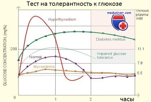 Тест на толерантность к глюкозе в норме. Техника проведения и ...