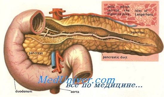 Лечение травм поджелудочной железы. Тактика